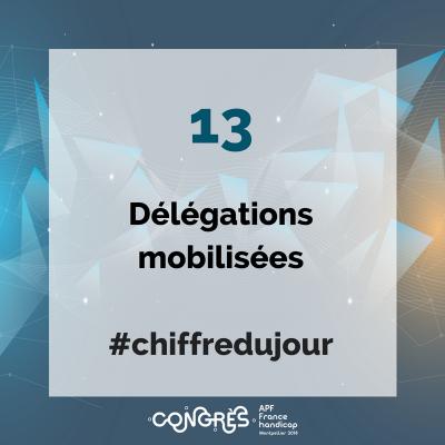 13 délégations mobilisées